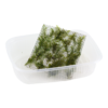 Fissidens fontanus - Portion
