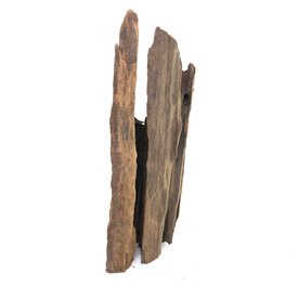 Mangrovenwurzel #4 (31x10x8 cm)