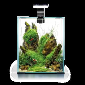 Aquael Shrimp Set Day&Night 30 Liter Schwarz