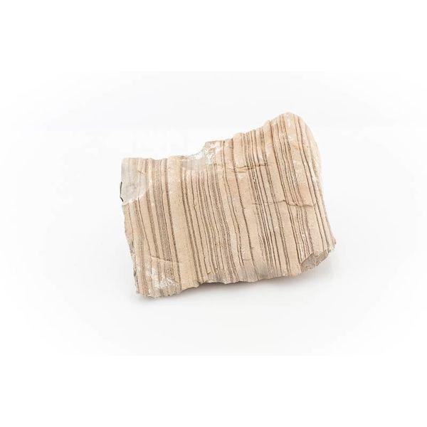 Sandwüstenstein - Gobi Rock, 0.8-1.2kg