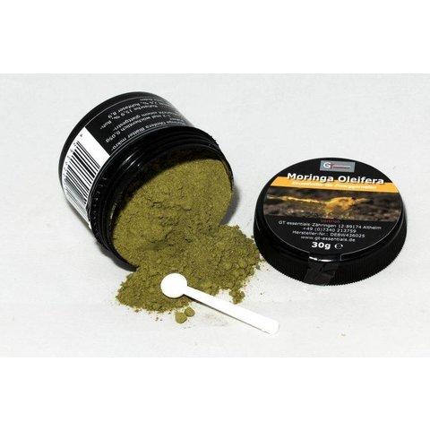 GT essentials - Moringa Oleifera mikronisiert