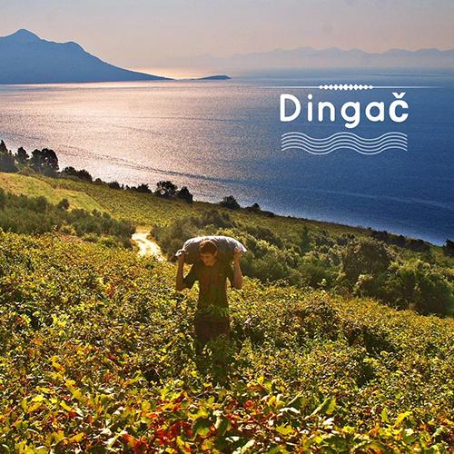 Wijnweetje #8: Dingac