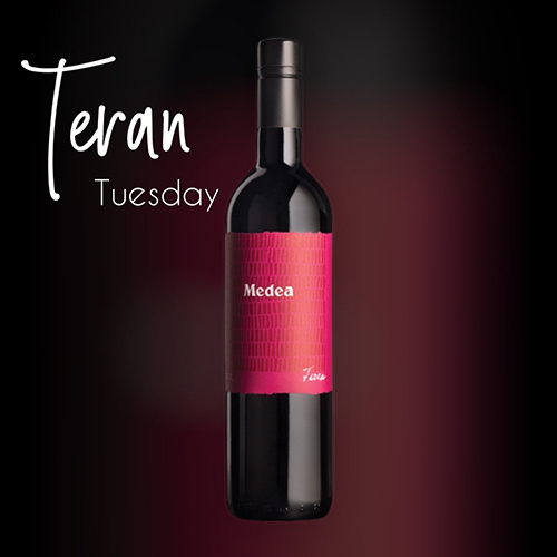 Teran Tuesday
