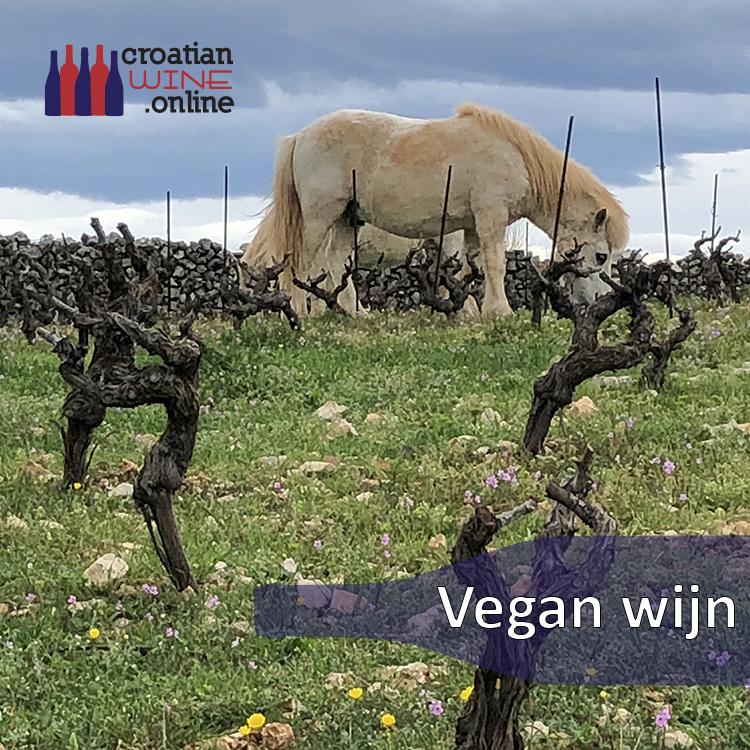 Vegan wijn blog