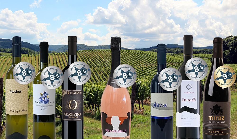 De Grote Hamersma bekroont 7 Kroatische wijnen