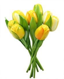 Entfernen Sie die Feder zu Hause mit Tulpen aus Holz