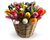 wooden tulips in a wicker basket