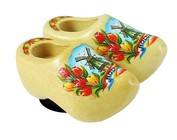magnetic clogs