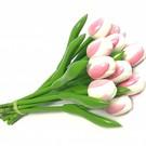 boeket houten tulpen in de kleur wit- roze 20cm