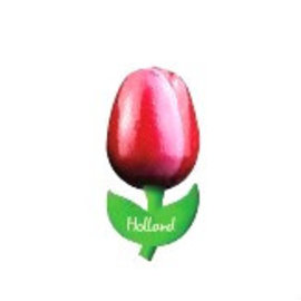 Holz Tulpe auf einem Magneten rot / weiß