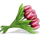 bouquet Tulpen aus Holz in Rot / Weiß