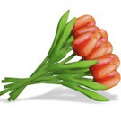 bouquet mit Tulpen aus Holz in orange