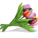 boeket houten tulpen, gemengde kleuren