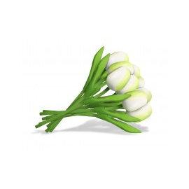 Boeket witte houten tulpen