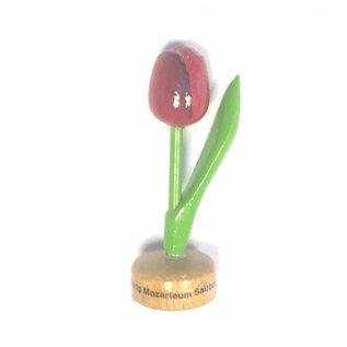 Tulpen aus Holz mit Logo zu Fuß in verschiedenen Farbe