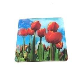 3 D onderzetters tulpen