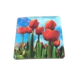 3 D coasters tulips