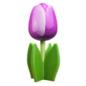 hölzerne Tulpe auf einem Blatt mit Text in verschiedenen Farben