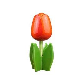Orange Holz Tulpe auf einem Blatt