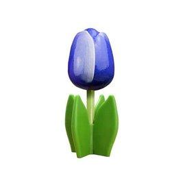 Blaue Holz Tulpe auf einem Blatt