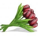 boeket houten tulpen in de kleur rood 20cm