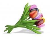 Tulpen aus Holz 20cm