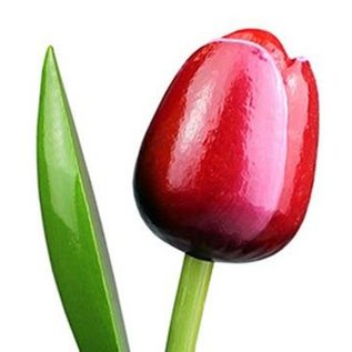 Wooden tulips red - white