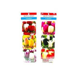 coasters Dutch tulips