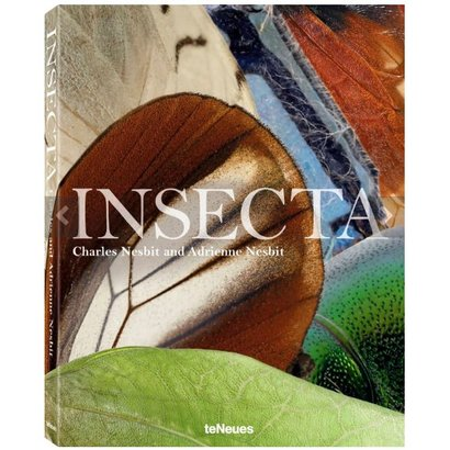 Insecta teNeues