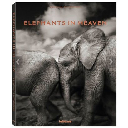Elephants in Heaven	Joachim Schmeisser teNeues