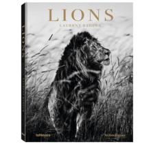 Lions Laurent Baheux teNeues