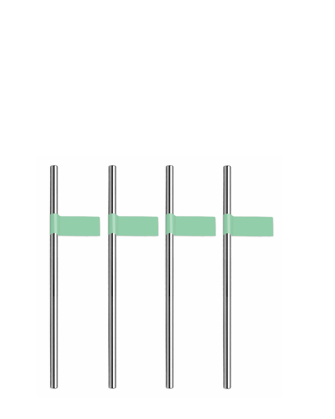 SILVER STRAWS WITH GREEN STRAW STICKERS