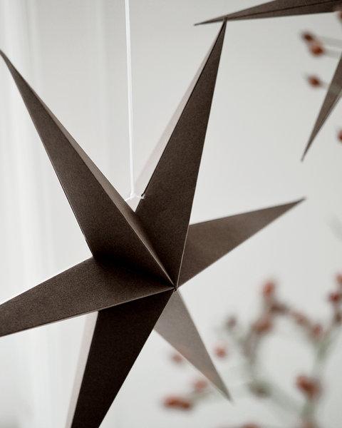 BROWN PAPER STARS