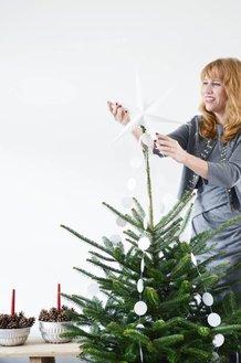 DSC_0021.png||NORDIC CHRISTMAS