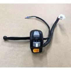 Left kill switch+ brake lever RSO Discover/Grace