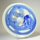 Schaal, blauw in wit