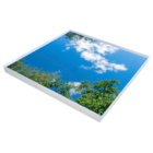 Interlight LED Active Sky paneel 1200x1200x100mm 6500K wolken en bomen