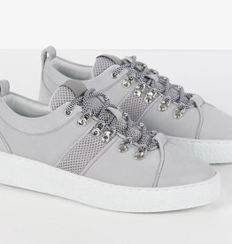 Mountain Lowtop II Grey