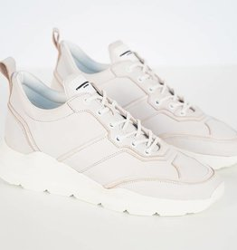Runner Lowtop Off White