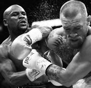 De gesigneerde collectie in boksen (vechtsporten)