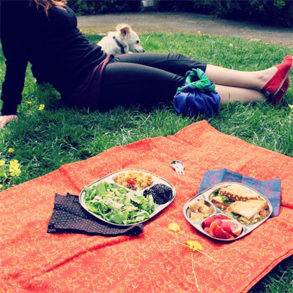 Eco Lunchbox Camping Tray