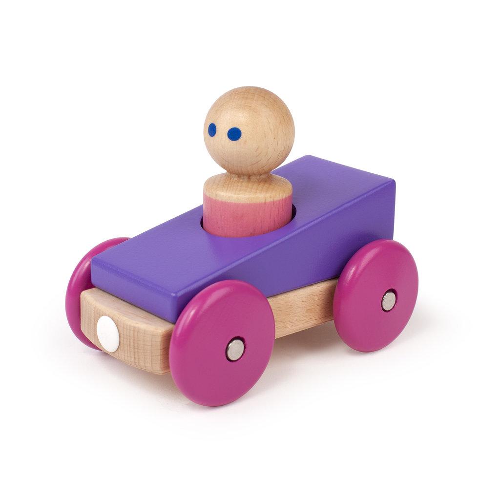 Tegu Magnetische auto