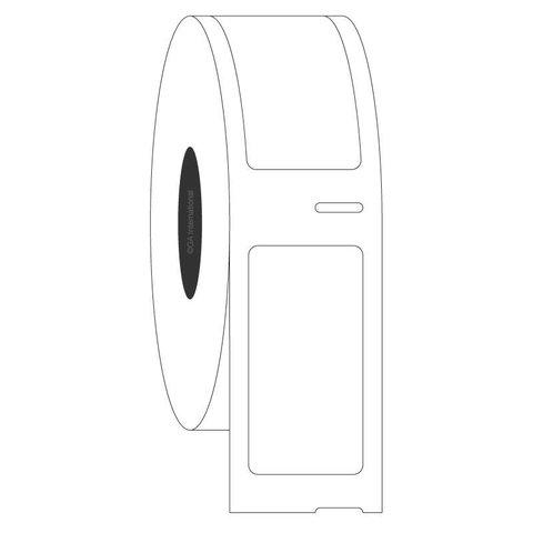 Étiquettes Cryogéniques DYMO - 19 x 38mm