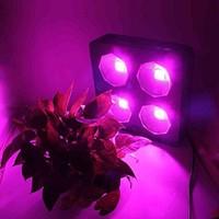 EPILEDS 300w COB LED kweeklamp vierkant