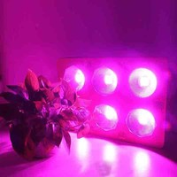 EPILEDS 450w LED Growlight COB