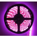 LEDStrip Roze 5 Meter 60 LED per meter 12 Volt