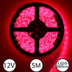 LEDStrip Rood 660nm (deep red) 5 meter 12V