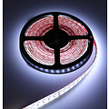 LED Strip RGB+CCT 5 meter 84led/m 5in1 LED 24V 2800k ~ 6500k