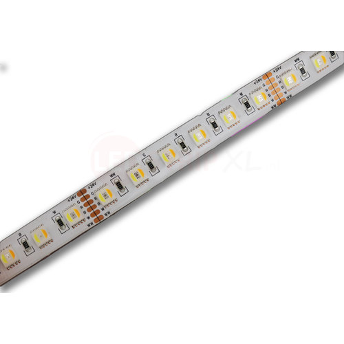 LED Strip RGB+CCT 2.5 meter 84led/m 5in1 LED 24V 2800k ~ 6500k