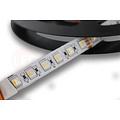 LED Strip RGBW Ultra 5 Meter 84 LED per meter 24 Volt